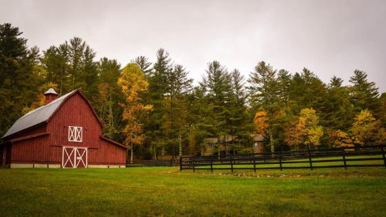 Country homes, hobby farms